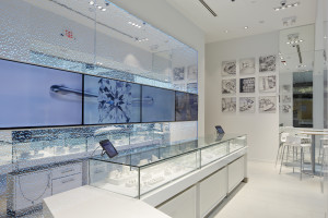 Blue Nile Webroom at The Roosevelt Field Mall, In Garden City NY